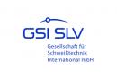 Logo GSI